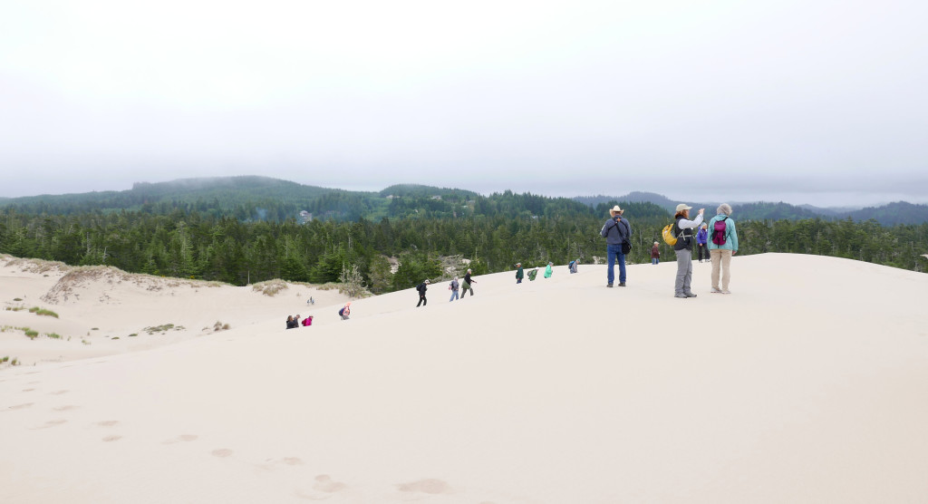 Hiking to the top of one of the large sand dunes.
